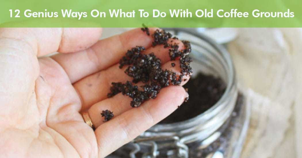 what to do with old coffee grounds