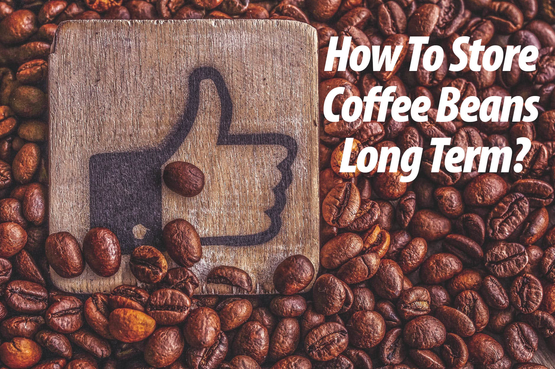 How To Store Coffee Beans Long Term?